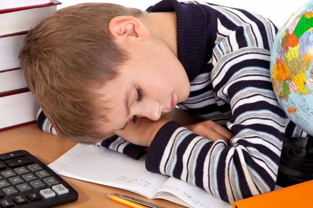 Здодевните училишта